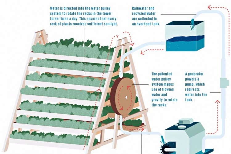 vertical  farming in city against pesticides and food crisis