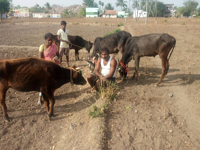 Help to this Farmer family and his son By pavithra