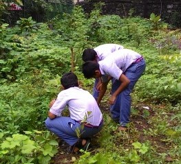 Support us in planting more trees for a better planet