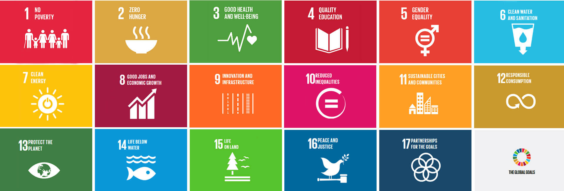UN Sustainable Development Goals: List of organizations that you can support