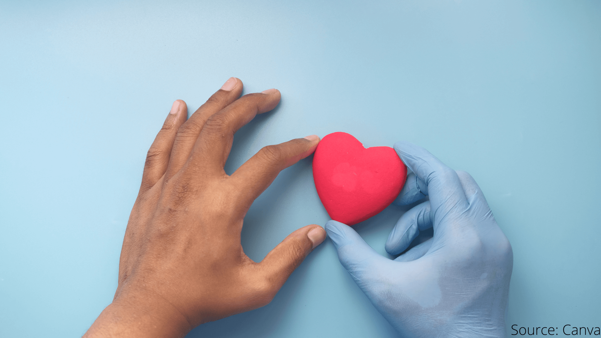 Organ Donation Day - Why One Should Volunteer To Be An Organ Donor